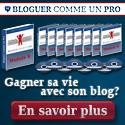 Bloguer Comme un pro au Maroc